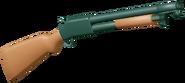 Shotgun2021