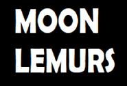 Moon Lemurs
