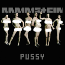 Pussy Cover