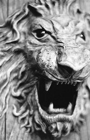 Snarling Lions