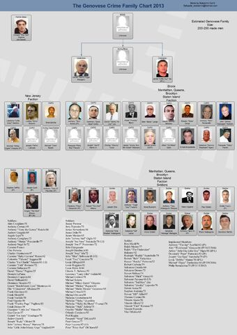 Picture 34 Mafia Family Leadership Charts About The Mafia Mafia Families Mafia Crime Crime Family