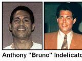 Anthony Indelicato