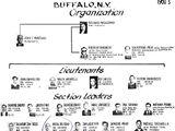 Buffalo crime family