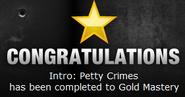 Petty Crimes Gold