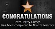 Petty Crimes Bronze