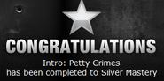 Petty Crimes Silver