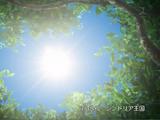 Sindria Kingdom (episode)