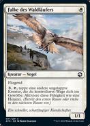 Falke des Waldläufers
