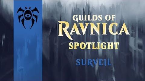 Guilds_of_Ravnica_Spotlight_Surveil