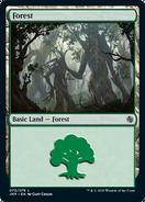 Forest JMP 70