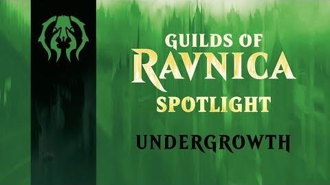 Guilds_of_Ravnica_Spotlight_Undergrowth