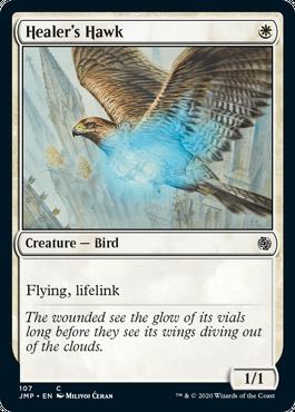 Healer's Hawk.png