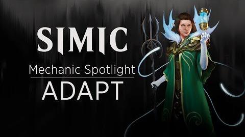 Simic_Mechanic_Spotlight_Adapt