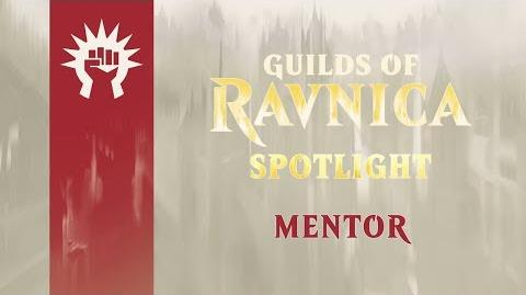 Guilds of Ravnica Spotlight Mentor