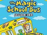 Season 1 (The Magic School Bus)