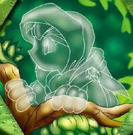 Hood of Hiding MND.png