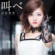 Sakabe-Limited Edition
