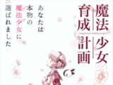 Magical Girl Raising Project TV Animation