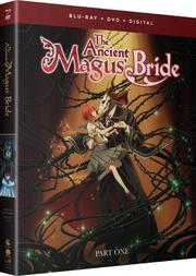 Blu-ray DVD Como Part 1.png