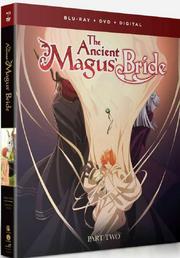 Blu-ray DVD Como Part 2.png