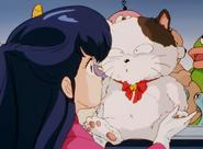 Kyoko & Kotatsu-Neko