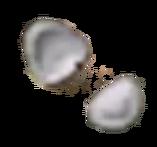 Flat Seed LoM