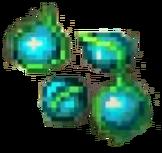 Round Seed LoM