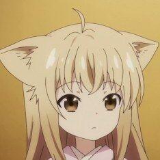 Yuzu 15610.jpg