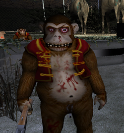 The Monkeys.PNG