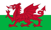 Flag of Lampeter