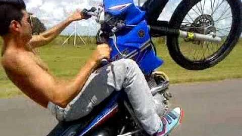 Willy moto pergamino en xtz