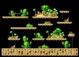 Cactus Desert 2