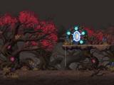 Heart Tree Guardian Grove
