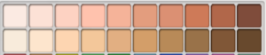 Skincolorsbasic.png