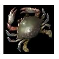 Horse Crab.png