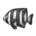 Striped Beakfish.png