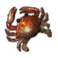 Toasty Crab.png