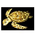 Golden Turtle.png