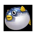 Tiger Blowfish.png