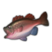 Lava Bass.png