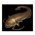 Catfish.png
