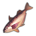 Red Sailfin Sandfish.png