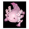 Blooming Axolotl.png
