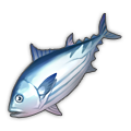 Skipjack Tuna.png