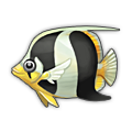 Zebra Bream.png