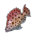 Red-Hot Grouper.png