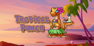 Tropical Punch