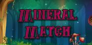 Mineral Match