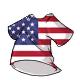 Shirt UnitedStates