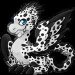 Gobble dalmatian